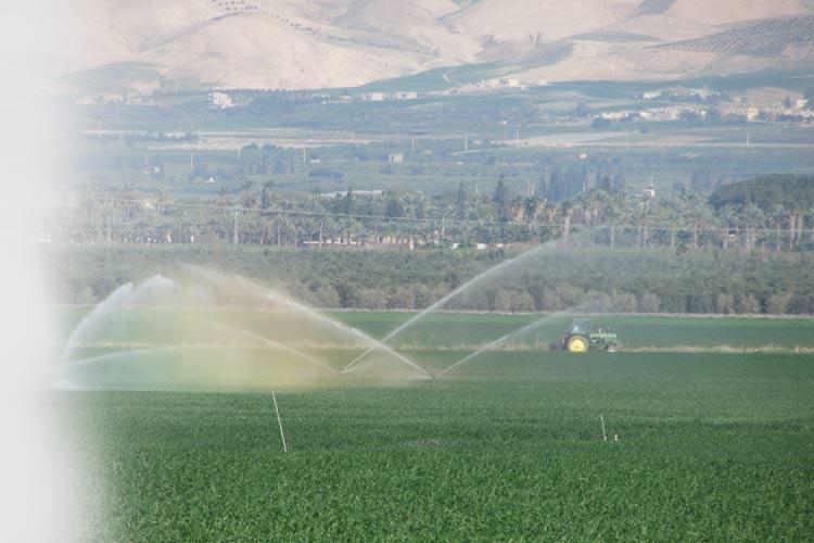 מהפכה בהקצאת קרקעות חקלאיות בפריפריה